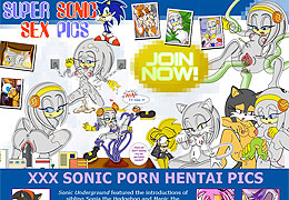 Sonic XXX, was an anime in which WILD OFRIES TOOK PLACE!